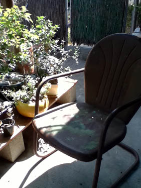Brown chair and sun