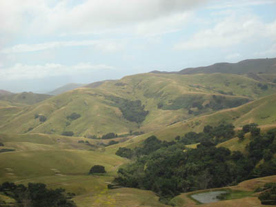 Central coast hills
