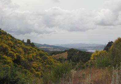 Hills with Lake Cachuma