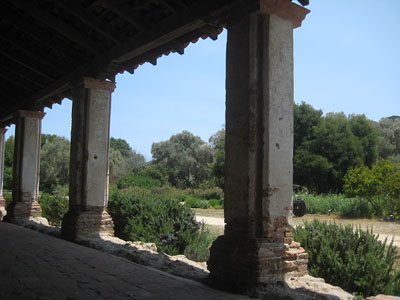 Purisma original columns