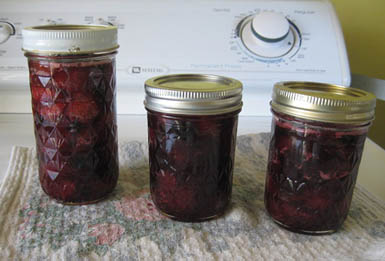 3 jars mixed fruit small batch preserves 7-11