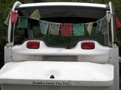 Buddha loves you car