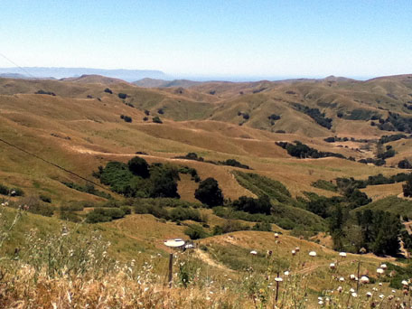 Costal hills south